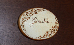 ginestra01